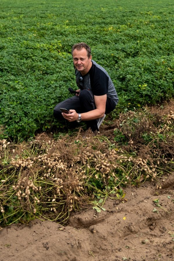 Olly from Living BBQ captures peanuts in the ground